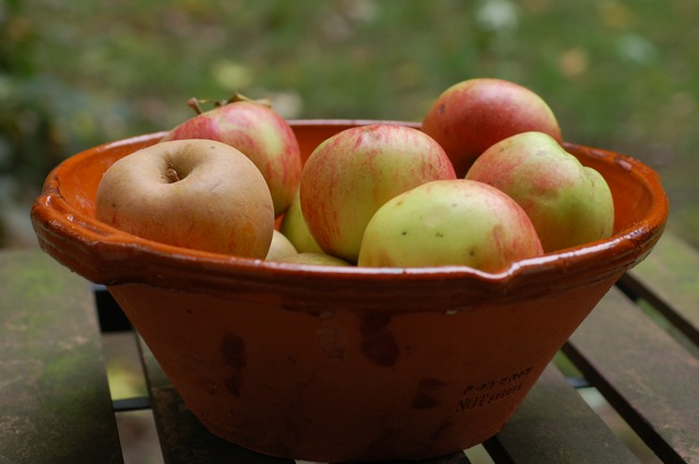apple-fig-open